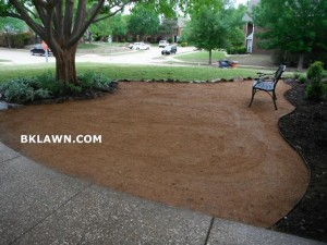 Reduce lawn area with hardscape and landscape